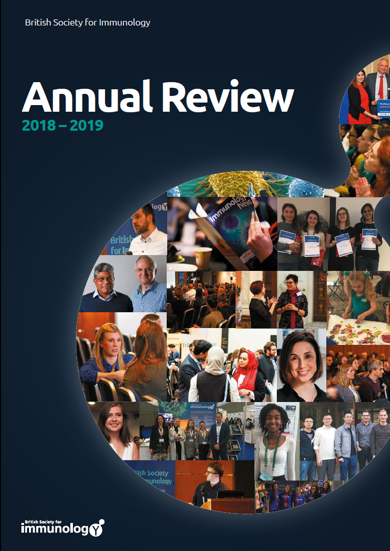 BSI Annual Review 2018 2019