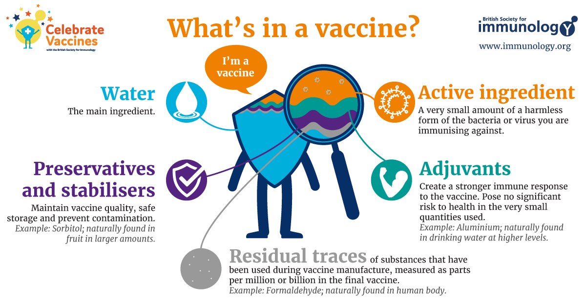 What S In A Vaccine British Society For Immunology