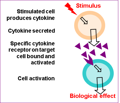 Cytokines - Introduction - Figure 1a