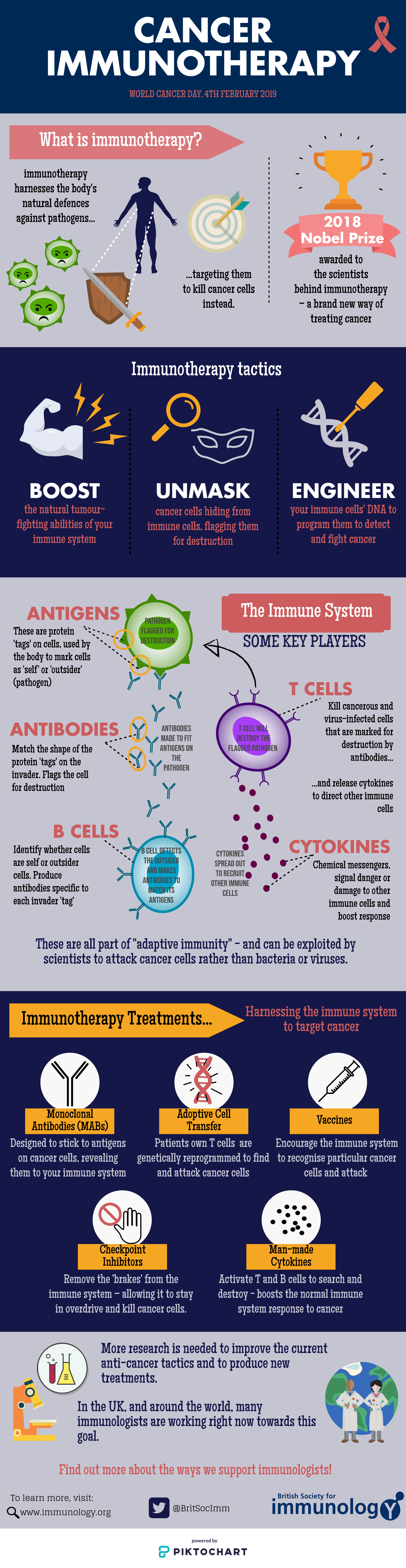 Cancer Immunotherapy Infographic for World Cancer Day 2019 from the British Society for Immunology (BSI)