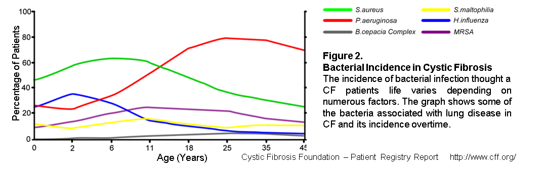 Microbial infection in cystic fibrosis - Figure 2