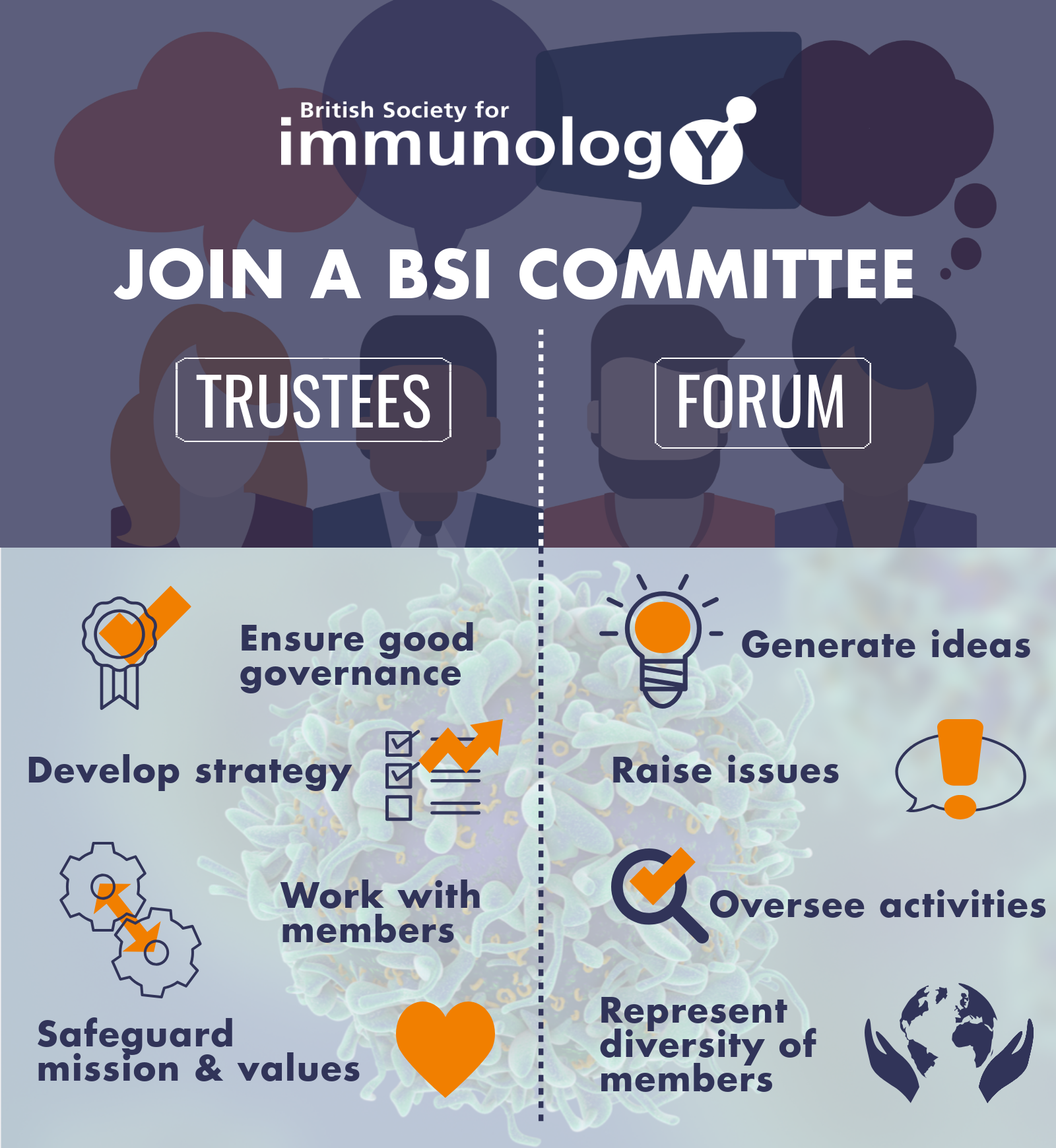 BSI commitee nominations 2019