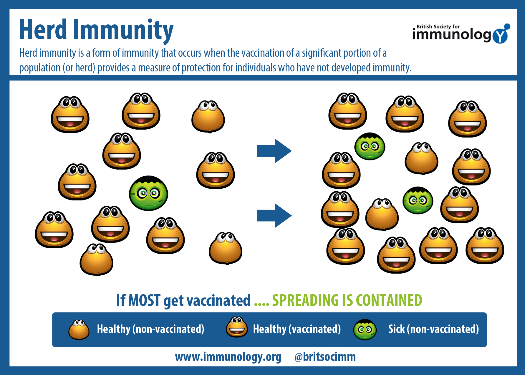 What is collective immunity, and why is it needed?