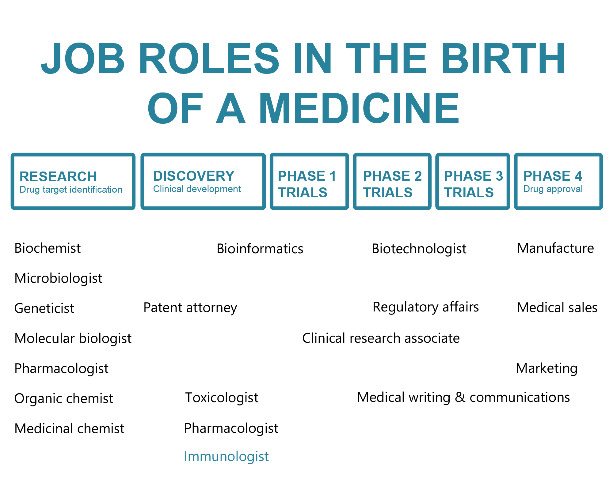 Job roles in the birth of a medicine diagram