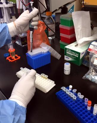 A Zika virus researcher at the NIAID Vaccine Research Center prepares samples.jpg