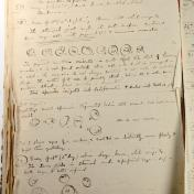 Page 107 from Sir Ronald Ross notebook